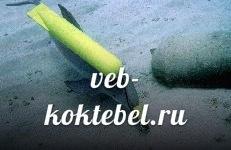 в Крыму дельфины боевые