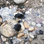 На нудистском пляже Коктебеля случилось Чудо!